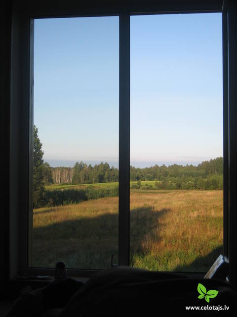 View_from_Bedroom_1.jpg