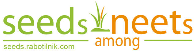 Logo_SEEDs_among_NEETs.jpg